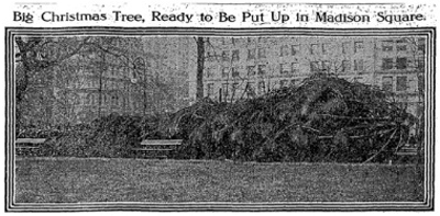 First Madison Square Park Christmas Tree