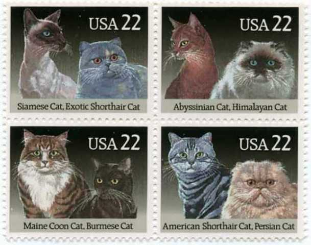 First-class stamps