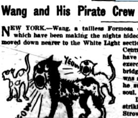 Wang and His Pirate Crew
