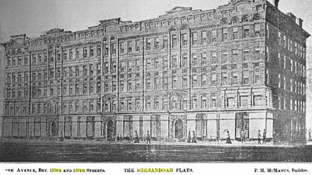 In the late 1800s, the builder Mr. P.H. McManus erected eight first-class apartment buildings, with stores, on the east side of 8th Avenue between 135th and 136th Streets. They were named Shenandoah after the river in Virginia. It was near here that Sarah was caught in the act and arrested for killing cats.