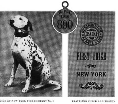 Mike wins Westminster Kennel Club Show
