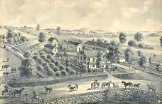 J.D. Willis Stock Farm, Middletown
