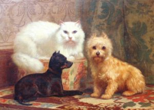 J.H. Dolph Angora Cat and Dogs
