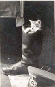 Police Cat Mascot in Boot
