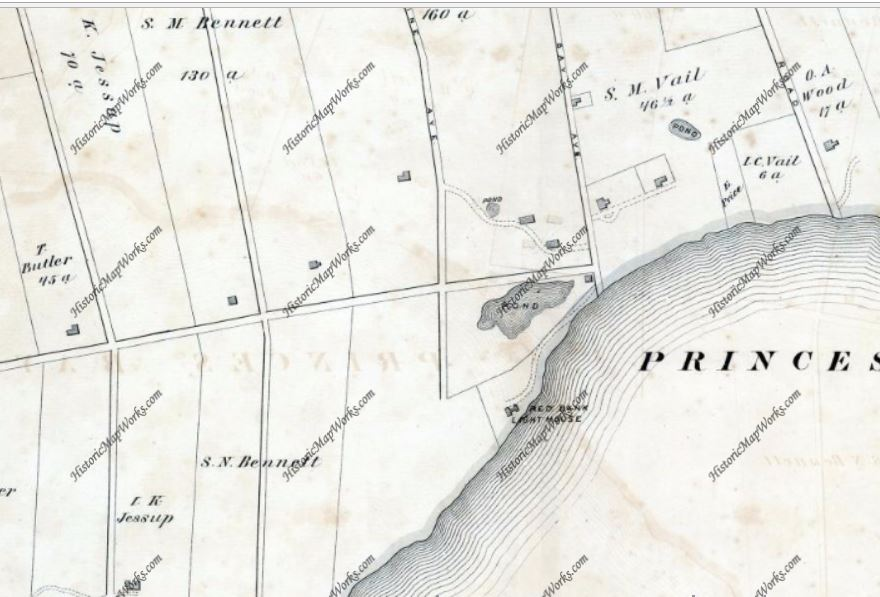 Father Drumgoole purchased the Bennett, Jessup, Vail, and Seguine farms, depicted here in this 1874 map of Richmond County (Staten Island).