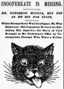 Snooperkatz got a lot of press when he went missing from The Gudebrod Brothers Silk Company at 644 Broadway.