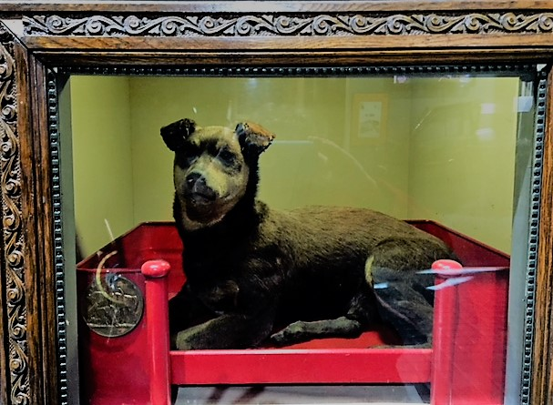 When Nipper died in 1939, men had his body stuffed and mounted, and he is forever on display at the New York City Fire Museum.