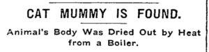 Bob Found in Grand Union Tea Company; Headlines from the New York Times, June 20, 1903