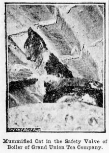 This image of the mummified cat appeared in the Brooklyn Daily Eagle. It's hard to make out, but you can just make a white paw wrapped around the black safety valve, as well as the side of Bob's face.